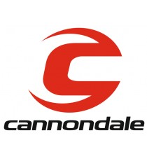 Stickers Cannondale