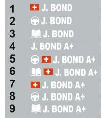 Sticker Pilote copilote Suisse